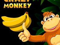 Crazy Monkey игра